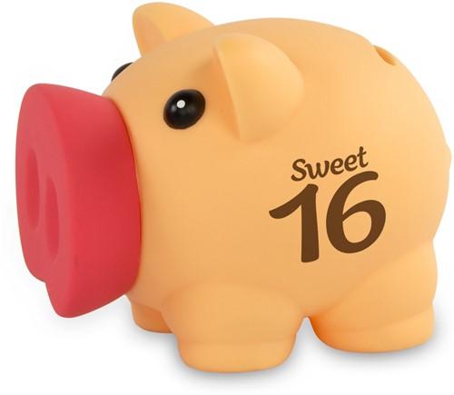 Spaarvarken Sweet 16