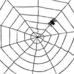 Decoratie Spinnenweb Zwart (150cm)