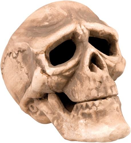 Decoratie Doodshoofd Skull 22x15cm