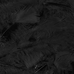 100 Veertjes Zwart