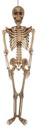 Decoratie Skelet (200cm)