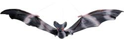 Decoratie Vliegende Vleermuis Zwart (27x52 cm)