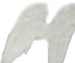 Engelenvleugels Wit 30x45cm