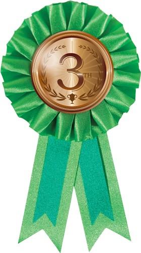 Medaille Rozet 3e Brons