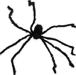 Decoratie Spin Zwart (200cm)