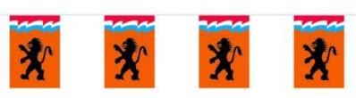 Vlaggenlijn Vierkant Leeuw 6m