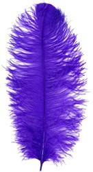 Prinsenveer Paars 60-70cm (Struisvogelveer)