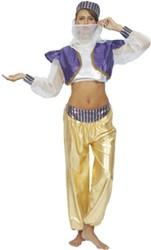 Kostuum Haremdame Habiba