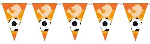 Vlaggenlijn Oranje Leeuw 6mtr