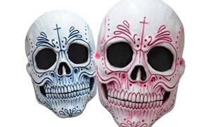 Koop nu de mooiste en gekste maskers bij Carnavalsland!