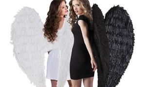 Vleugels en engelenvleugels kopen bij Carnavalsland